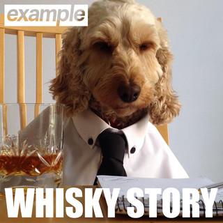 Whisky Story