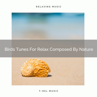 Birds Tunes For Relax Composed By Nature