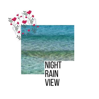 Night Rain View
