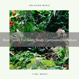 River Tunes For Deep Sleep Composed By Nature