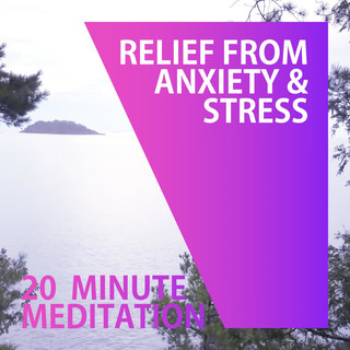 20 Minute Meditation Music (Relief From Anxiety & Stress)