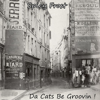 Da Cats Be Groovin