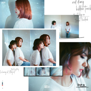 Red Diary \'Hidden Track\'