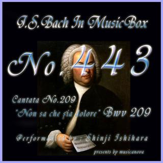 J・S・バッハ:カンタータ第209 悲しみのいかなるかを知らず BWV209(オルゴール) (J.S.Bach:Non sa che sia dolore, BWV 209 (Musical Box))