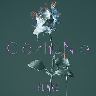 FLARE (English Version)