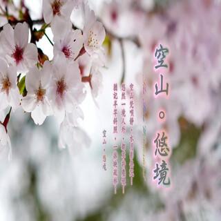 東方冥想音樂系列 (11):空山。悠境.The Pure Wonderland