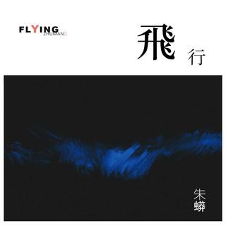 Flying 飛行