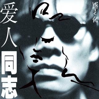 愛人同志 (香港版)