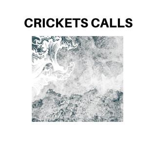 Crickets Calls