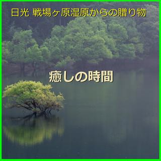 癒しの時間 ~日光 戦場ヶ原湿原からの贈り物~ (小鳥の歌声と優しい小川のハーモニー)現地収録 (Iyashi No Zikan Nikko Senjogahara Marshland -Singing Voice of Birds and Stream- (Relax Sound))