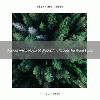 Perfect White Noise Of Waves And Woods For Good Sleep