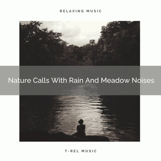 Nature Calls With Rain And Meadow Noises