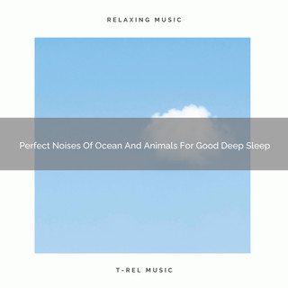 Perfect Noises Of Ocean And Animals For Good Deep Sleep