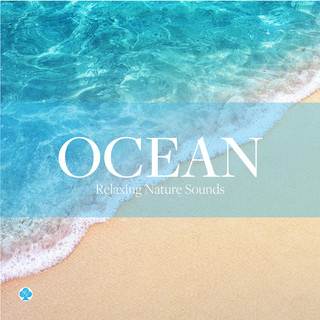 波の音 自然音の癒し (Ocean Sounds -Relaxing Nature Sounds)