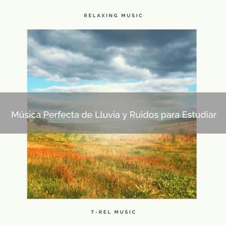 Música Perfecta De Lluvia Y Ruidos Para Estudiar