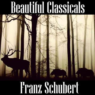 Beautiful Classicals:Franz Schubert