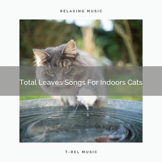 Total Leaves Songs For Indoors Cats