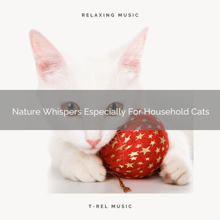 Nature Whispers Especially For Household Cats