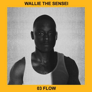 03 Flow