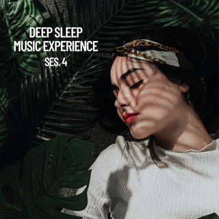 Deep Sleep Music Experience, Session 4