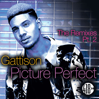 Picture Perfect (The Remixes, Pt. 2)