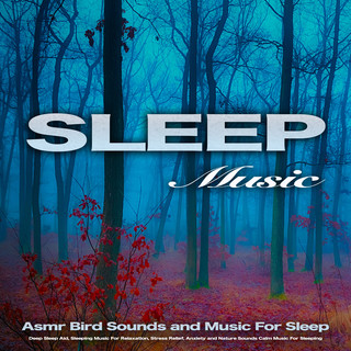 Sleep Music:Asmr Bird Sounds And Music For Sleep, Deep Sleep Aid, Sleeping Music For Relaxation, Stress Relief, Anxiety And Nature Sounds Calm Music For Sleeping