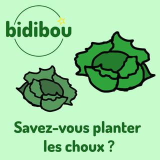 Savez - Vous Planter Les Choux ?