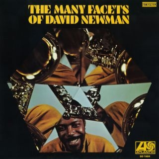 The Many Facets Of David Newman