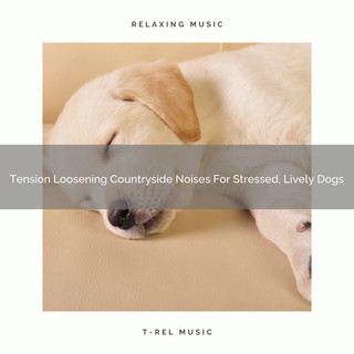 Tension Loosening Countryside Noises For Stressed, Lively Dogs