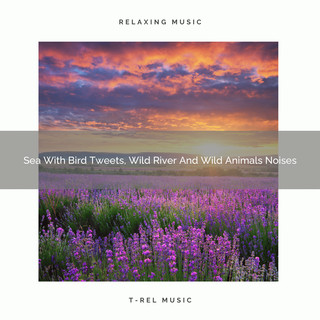 Sea With Bird Tweets, Wild River And Wild Animals Noises