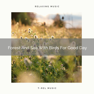 Forest And Sea With Birds For Good Day