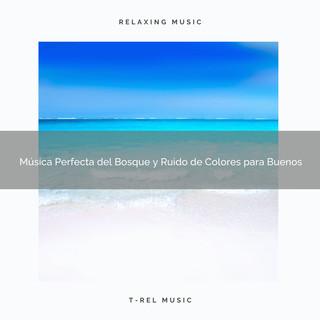 Música Perfecta Del Bosque Y Ruido De Colores Para Buenos