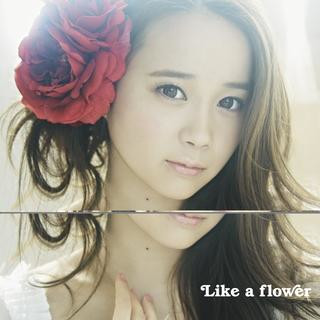 Like a flower (Type - A)
