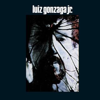 Luiz Gonzaga Jr - Gonzaguinha