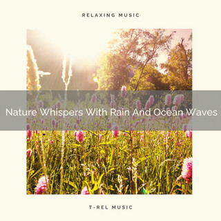 Nature Whispers With Rain And Ocean Waves