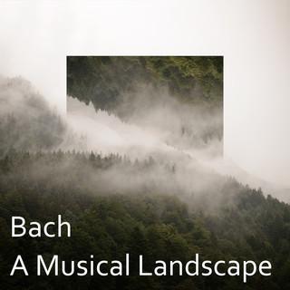 Bach:A Musical Landscape