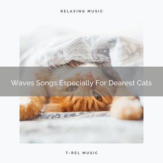 Waves Songs Especially For Dearest Cats