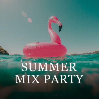 Summer MIX Party