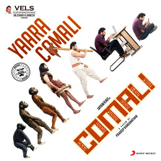 Yaara Comali (From
