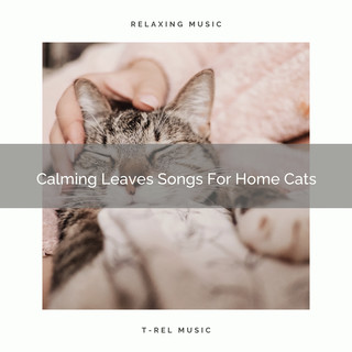Calming Leaves Songs For Home Cats