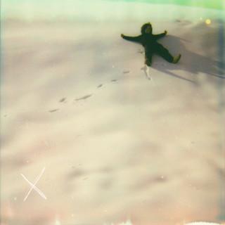 X (Butterfly)