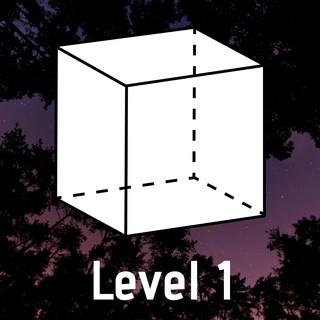 Cube:Level 1