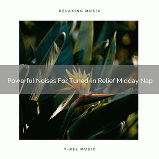 Powerful Noises For Tuned - In Relief Midday Nap