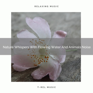 Nature Whispers With Flowing Water And Animals Noise