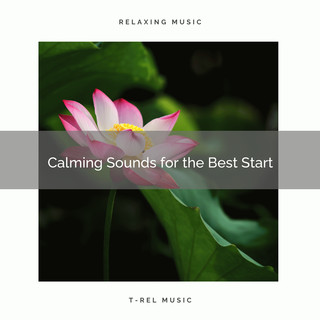 2020 Best:Calming Sounds For The Best Start