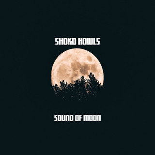 Sound Of Moon