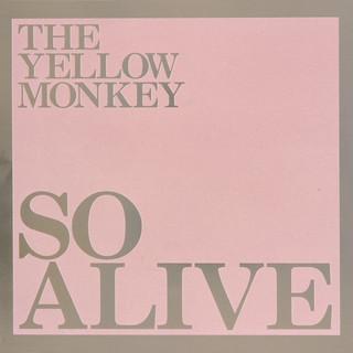 So Alive (Remastered) (Live)
