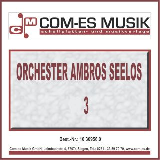 Orchester Ambros Seelos 3