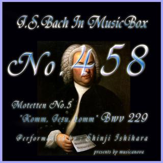 J・S・バッハ:モテット第5番 来ませ、イエスよ、来ませ BWV229(オルゴール) (J.S.Bach:Motetten No.5 Komm, Jesu, komm, BWV 229 (Musical Box))