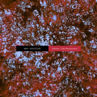 Solitude (Felsmann + Tiley Reinterpretation)